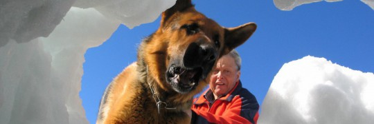 06_02_Lawinenhund
