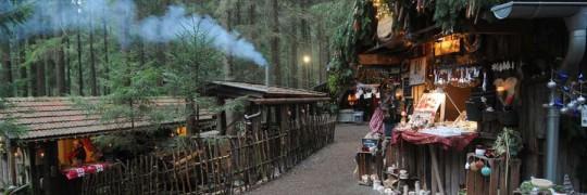 travelzona-erdei-karacsony_cimlap