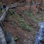 Dr. Vogelgesang-szurdok: séta a sziklafalak oldalában