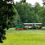 Pálháza: hangulatos erdei vasút zakatol a smaragdzöld erdő mélyén