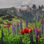 Hegyóriások szentélyében: Dél-Tirol