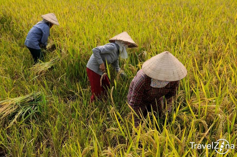 08_travelzona_Eszek_Vietnam30