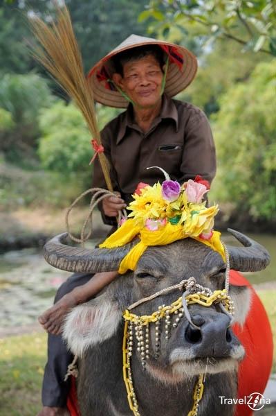 travelzona_Eszek_Vietnam52