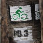 Pattanj fel a drótszamárra: tavaszi tekerés a Pilisben