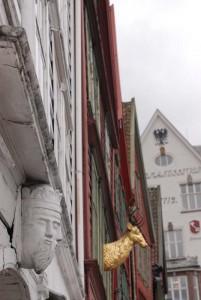 travelzona_Bergen23