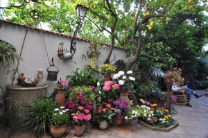 travelzona_Cordoba21