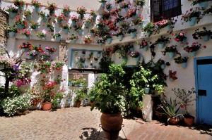 travelzona_Cordoba33