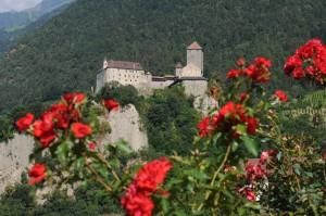 travelzona_Del_Tirol23