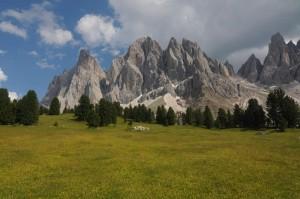 travelzona_Del_Tirol31