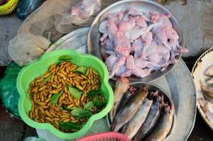 travelzona_Eszek_Vietnam23