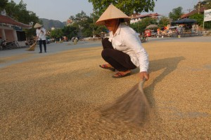 travelzona_Eszek_Vietnam59