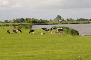 Monnickendam_travelzona1