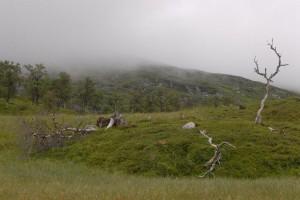 travelzona_Norvegia24