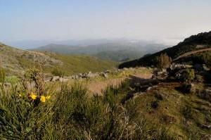 travelzona_Pico_Ruivo6