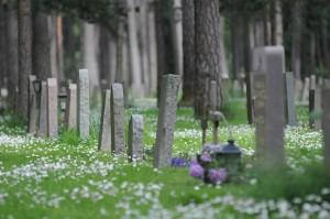 Skogskyrkogarden - temető