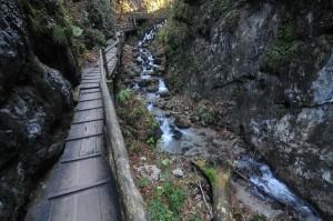 Vogelgesang_szurdok_TravelZona14