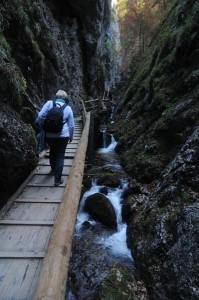 Vogelgesang_szurdok_TravelZona23