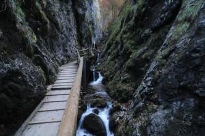 Vogelgesang_szurdok_TravelZona24